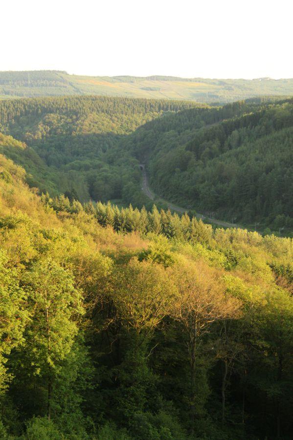 weekend Ardennen heuvelachtige bosrijke omgeving